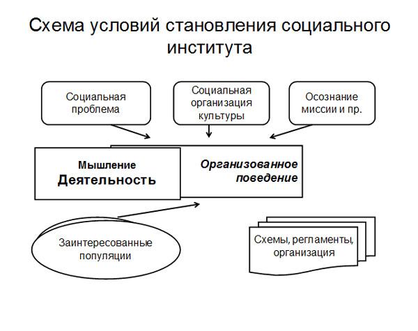 организация культуры;